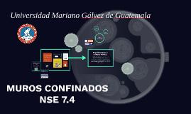 MUROS CONFINADOS NSE 7.4