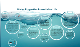 Water properties essential to life