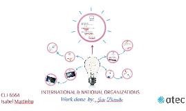 International and National(Portuguese) Organization