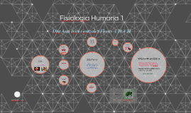 Fisiologia Humana 1