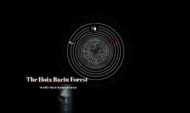 The Hoia Baciu Forest