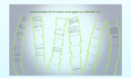 Copy of  Concentrados de Animales NicaragüenseCONANIC S.A