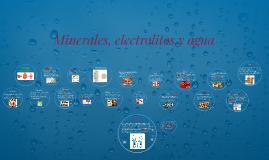 Minerales, electrolitos y agua
