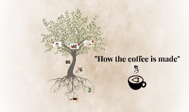 """HOW THE COFFEE IS MADE"""