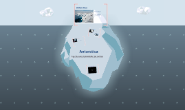 Copy of Antaractia