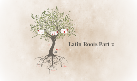 Latin Roots Part 2