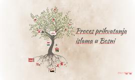 Vjerska struktura srednjovjekovne Bosne
