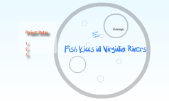 dons fish kills