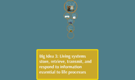 Big Idea 3: Living systems store, retrieve, transmit, and re