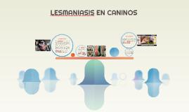 LESMANIASIS EN CANINOS
