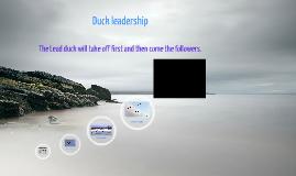 Copy of Ducks as Leaders