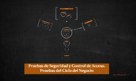 Copy of Pruebas de Seguridad y Control de Acceso.