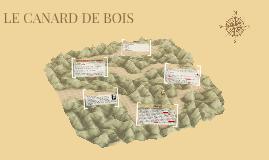 LE CANARD DE BOIS