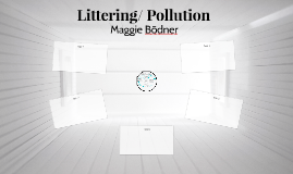 Littering/ Pollution