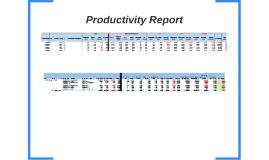 Productivity Report