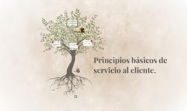 Principios básicos de servicio al cliente.