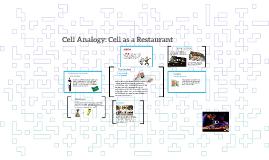 Cytology Anology