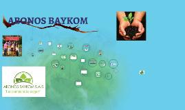 ABONOS BAYKOM