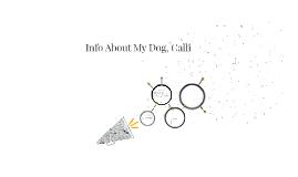 Info About My Dog, Calli