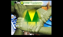 DISEÑO DEL  CONTROL INTERNO EN EL DISPONIBLE PARA COOPMINEXT