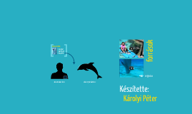 Delfinek kommunikáció