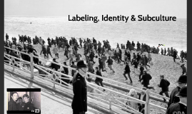 Labelling, Identity and Subcultures