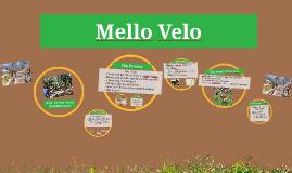 Melo Velo