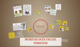Copy of MORFOLOGÍA FACIAL FORENSE