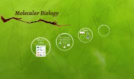 IB Molecular Biology