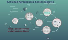 Actividad Agropecuaria Cantón Moravia