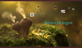 Copy of Reino Hongos