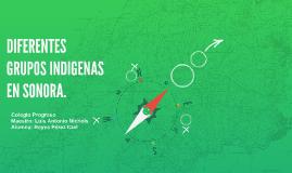 DIFERENTES GRUPOS INDIGENAS EN SONORA.