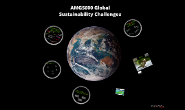 AMGS600 Global Sustainability Challenges