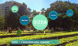 Cuba - L'agroécologie urbaine