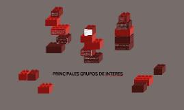 PRINCIPALES GRUPOS DE INTERES