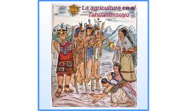 Copy of La agricultura en el Tahuantinsuyo