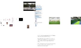 LISS July 2014 globalisation of sport