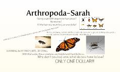 Arthropoda-Sarah