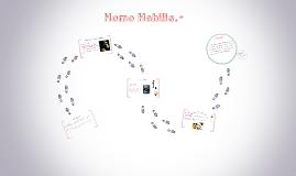 Homo Habilis.-