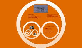 Copy of La estrategia del Caracol