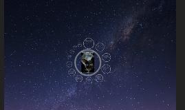Copy of The Black Cat