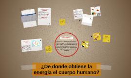 ¿De donde obtiene la energia el cuerpo humano?