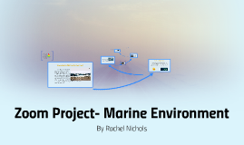 Zoom Project- Marine Environment