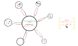 Copy of TIC en la enseñanza de la biología