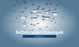 Belbin - UPC