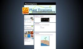 Plant Adaptions