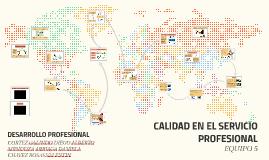 CALIDAD EN EL SERVICIO PROFESIONAL