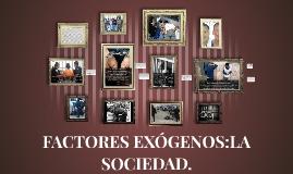 FACTORES EXÓGENOS:LA SOCIEDAD.