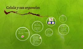 Celula y sus organelos