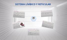 Sistema limbico y Reticular